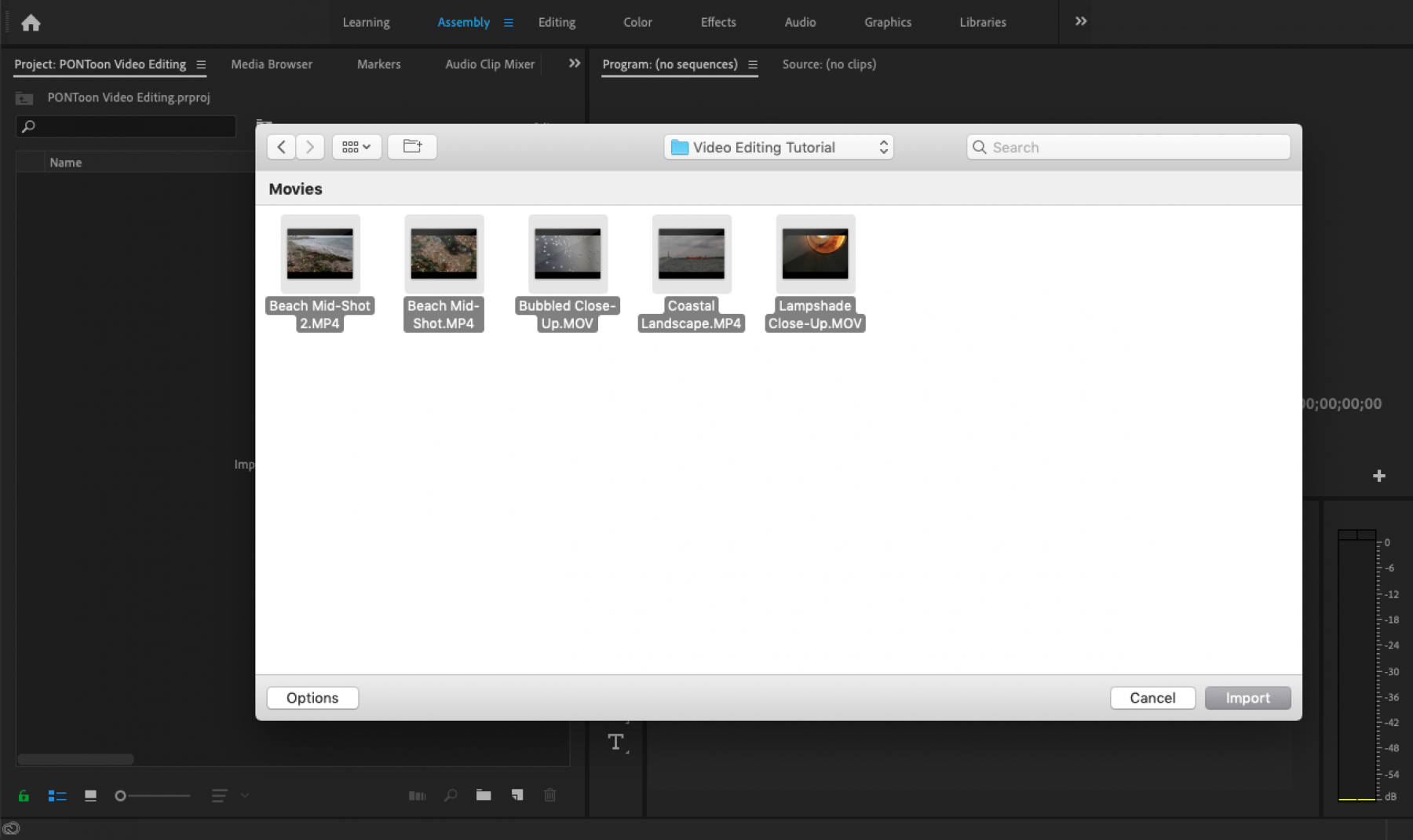 PONToon video editing article - importing media